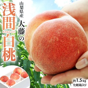 桃 もも モモ 山梨県産 大藤の浅間白桃 特秀品 約1.5kg(5〜8玉) 消えゆく品種を救え 送料無料|tsukijiichiba