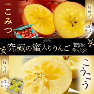 お試し 送料無料 青森県 究極の蜜入りりんごセット「こみつりんご 秀A品 約2kg(6〜12玉)」と「こうこう 秀品 約2kg(5〜8玉)」各1箱(計2箱セット)|tsukijiichiba