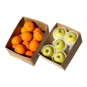 みかん ミカン 蜜柑 りんご リンゴ 林檎 青森県産 王林 約1.4kg 5玉&西宇和みかんセット 約2kg 2Lサイズ 常温 送料無料  tsukijiichiba