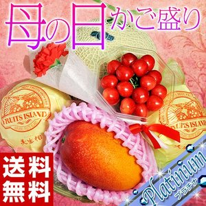 母の日 2021 《母の日ギフト》『国産フルーツバスケット Platinum』カゴ盛り 4種5品 送料無料 tsukijiichiba