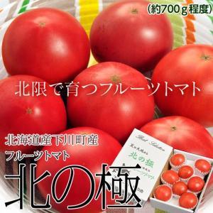 『北の極 フルーツトマト』 北海道・下川町産 約700g(6〜12玉) ※冷蔵 ○|tsukijiichiba