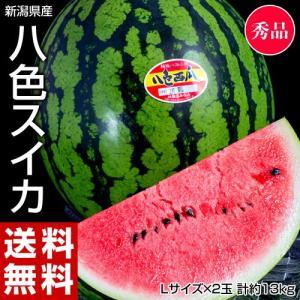《送料無料》新潟県産「八色西瓜(やいろすいか)」 Lサイズ ...