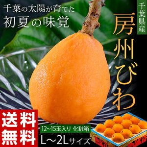 千葉県産『房州びわ』2〜3L 12玉入り ※冷蔵 frt ○