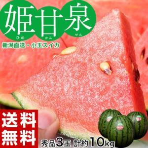 《送料無料》スイカ 新潟直送 「姫甘泉(ひめかんせん)」 秀...