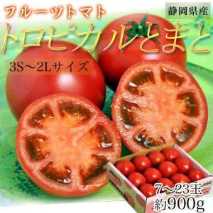 『トロピカルとまと』静岡産  約900g 3S〜2L(7〜23玉) ※常温 ○|tsukijiichiba
