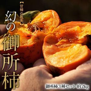 《送料無料》奈良産「御所柿3種セット」(本御所、藤原御所、米田御所、天神御所、花御所のうち3種類をお送りします。)約2キロ frt ☆|tsukijiichiba