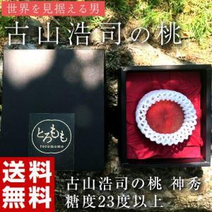 古山浩司氏が作る糖度23度以上の桃 神秀 1玉 福島県産 送料無料 常温 産地直送 もも モモ ギフト 贈り物 贈答|tsukijiichiba