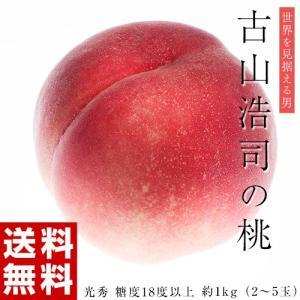 古山浩司氏が作る糖度18度以上の桃 光秀 約1kg(2〜5玉) 福島県産 送料無料 常温 産地直送 もも モモ ギフト 贈り物 贈答|tsukijiichiba