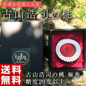 古山浩司氏が作る糖度20度以上の桃 極秀 1玉 福島県産 送料無料 常温 産地直送 もも モモ ギフト 贈り物 贈答|tsukijiichiba