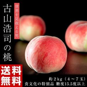 古山浩司氏が作る糖度15.5度以上の桃 食文化特別品 とろもも 約2kg(4〜7玉) 送料無料 常温 モモ ギフト 贈答 贈り物|tsukijiichiba