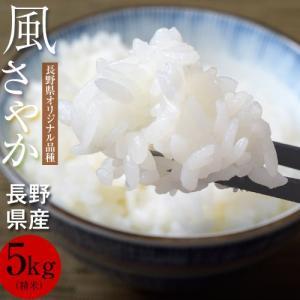送料無料 長野オリジナル品種 長野県産 風さやか 5キロ(精米)常温|tsukijiichiba
