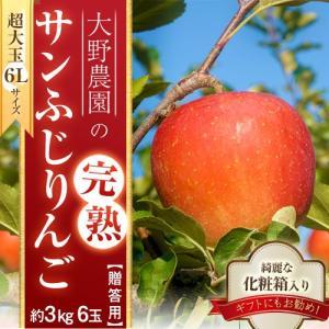 りんご 林檎 リンゴ 大野農園 完熟サンふじりんご 超大玉 6Lサイズ 6玉 約3kg 福島県石川町産 送料無料 常温 産地直送 お歳暮 ギフト 贈り物|tsukijiichiba