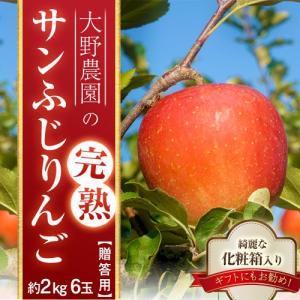りんご 林檎 リンゴ 大野農園 完熟サンふじりんご 約2kg 6玉 福島県石川町産 送料無料 常温 産地直送 お歳暮 ギフト 贈り物|tsukijiichiba