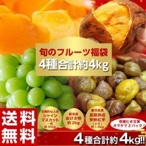 【新潟県産 おけさ柿 約2kg(9玉前後)】 様々な産地の柿の中でも食味の良い「おけさ柿」 キズやス...