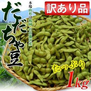 山形産 鶴岡白山の「だだちゃ豆」 訳あり品  約1kg※冷蔵 ◯|tsukijiichiba