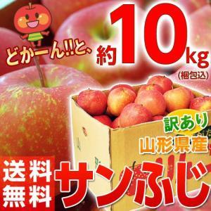 りんご 送料無料 山形産 訳あり サンふじ バラづめ 約10kg (梱包込重量  ) 26〜54玉|tsukijiichiba