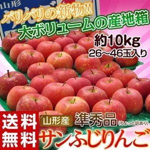 りんご 送料無料 山形産 サンふじ 準秀品 26〜46玉 約10kg|tsukijiichiba