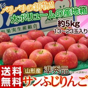 りんご 送料無料 山形産 サンふじ 準秀品 13〜23玉 約5kg|tsukijiichiba