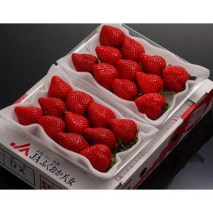 いちご イチゴ あまおう 福岡県産 あまおういちご DX 約270g×2パック ※冷蔵・送料無料 tsukijiichiba