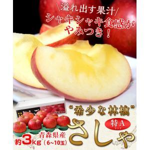 《送料無料》青森産「さしゃりんご(特A)」 約3kg 5〜9...