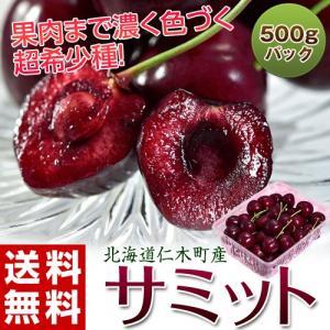 送料無料 北海道仁木町産 さくらんぼ「サミット」 約500g 冷蔵 tsukijiichiba