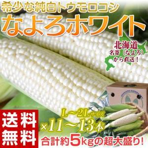 《送料無料》 北海道名寄(なよろ)産 「なよろホワイト」 L〜2Lサイズ 約5kg(11〜13本) ※冷蔵 ☆|tsukijiichiba