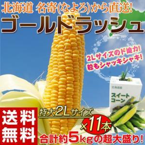 《送料無料》北海道名寄(なよろ)産 とうもろこし「ゴールドラッシュ」 約5kg 2Lサイズ 11本 ※冷蔵 ☆|tsukijiichiba