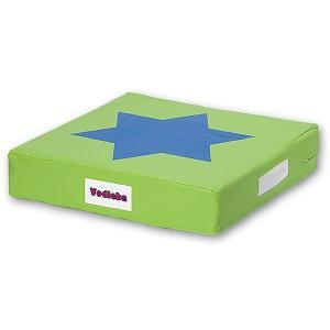 バランスクッション 遊びながらバランス感覚が鍛えられる ボディーバ グリーン オリジナルプログラムDVD付き|tsumura