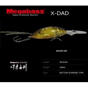 メガバス X-DAD NUMA EBI / メガバスルアー (メール便可)