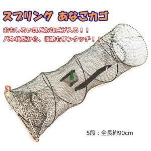 マルシン漁具 スプリング あなごカゴ 5段 / 仕掛け網 / SALE tsuribitokan