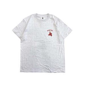 テトラポッツ/Tetrapots TPT-043 ショアT カラー:アッシュ (灰色 半袖Tシャツ)