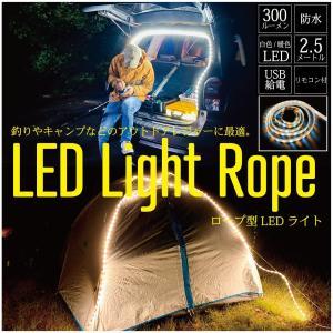 Asale LED 防水 ロープ ライト 2.5m リモコン付   キャンプ アウトドア USB給電式ライト フィッシィング 焚き火 tsuriking