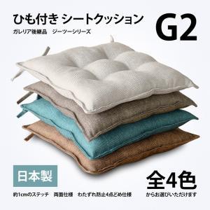 ひも付き シートクッション G2(ジーツー) ガワサイズ約45×45cm 4点どめ 両面仕様の写真