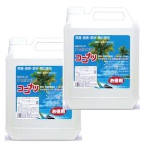 ココナツ 洗剤 お徳用4L 2本セット  ブルーシーインターナショナル|tsutsu-uraura
