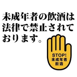 送料無料  ユーロホップ 330ml × 72缶セット  3ケース EUROHOP tsutsu-uraura 02