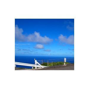 青ヶ島製塩所 ひんぎゃの塩 200g tsutsu-uraura 03
