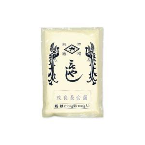 菱六 種麹 改良長白菌 粉状 100g|tsutsu-uraura