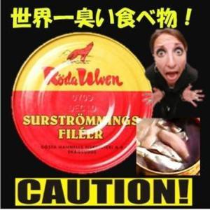 シュールストレミング 300g 世界一臭い食べ物!【冷蔵手数料無料】【代引不可】|tsutsu-uraura