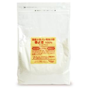パイオニア企画 国産小麦パン用強力粉春よ恋100% 2kg にっぽん津々浦々