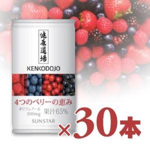 サンスター 健康道場 4つのベリーの恵み 缶 160g × 30本入り|tsutsu-uraura