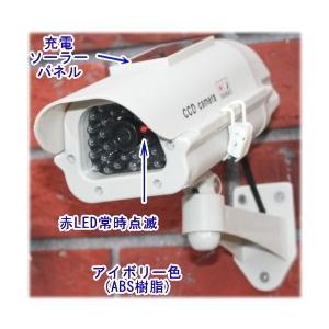 【SA-50562】 防犯カメラ・監視カメラ ソーラー充電式バッテリー内蔵 屋外防雨仕様 ダミーカメラ(アイボリー)|tu-han-net