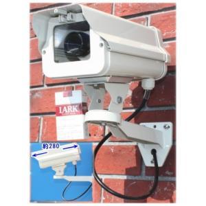 SA-50841 高級ダミーカメラ /屋外防雨仕様 SA-4100D 点滅無しタイプ|tu-han-net