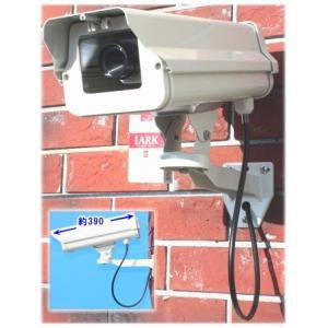 SA-50844 高級ダミーカメラ /屋外防雨仕様 SA-5100D 赤色LED 数年点滅式|tu-han-net
