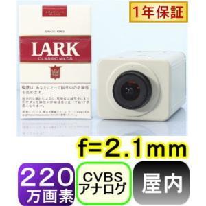 【SA-51119】 220万画素1200TVL 屋内用高画質カラーカメラ f=2.1mmCSマウントレンズ 画角:水平約125度|tu-han-net