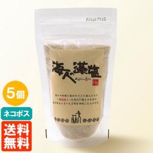 送料無料・クリックポスト・5袋セット 海人の藻塩 スタンドパック 100g×5袋 食塩 あまびとのも...