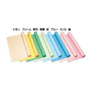 色模造紙 中厚口(10枚) アイボリー   教育施設限定商品 ed 130541|tukishimado