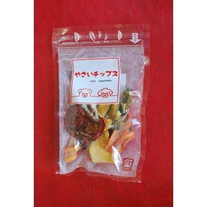 無添加 塩分不使用 国産 ペットフード やさいチップス10個入り(送料無料)|tukudani