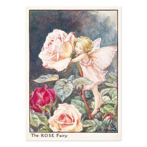 フラワーフェアリーズ   ポストカード<Rose Fairy>|tuliphouse