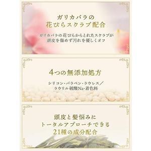 バランローズ クリームシャンプー2個×1セット VALANROSE Cream shampoo/シャ...