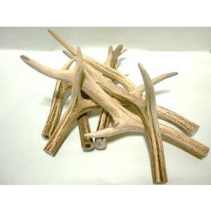 天然素材 鹿の角 中サイズ(28〜40cm)1キロ売 水・海難厄除のお守り ナイフ材等に(鹿角 エゾ鹿 ツノ 犬のおやつ 犬のおもちゃ アクセサリー|turidaisuki